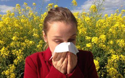 Ce qu'il faut savoir à propos des allergies saisonnières