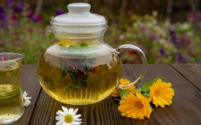 Les 3 remèdes les plus populaires de la médecine traditionnelle à base de plantes