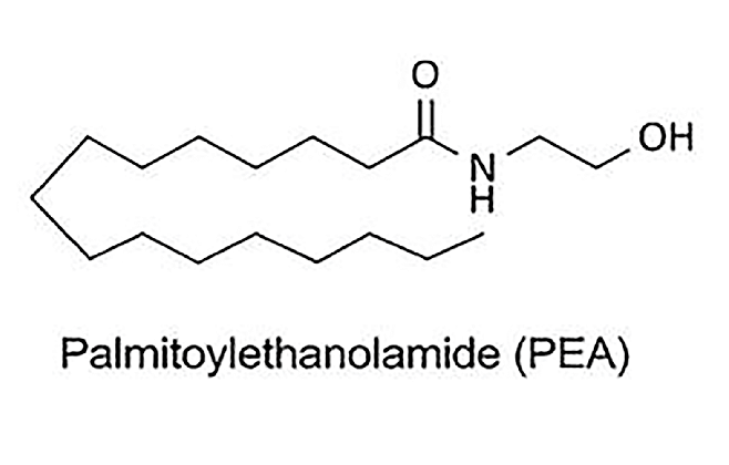 Chemical-structures-of-palmitoylethanolamide-PEA