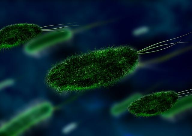 Qu'est-ce qu'un virus ? De quoi est-il constitué ?
