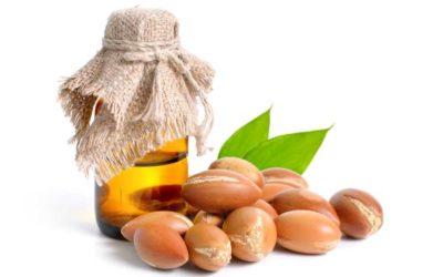 L'huile d'argan, l'or liquide du Maroc