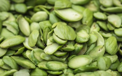 Le griffonia, la plante minceur anti grignotage qui régule l'appétit