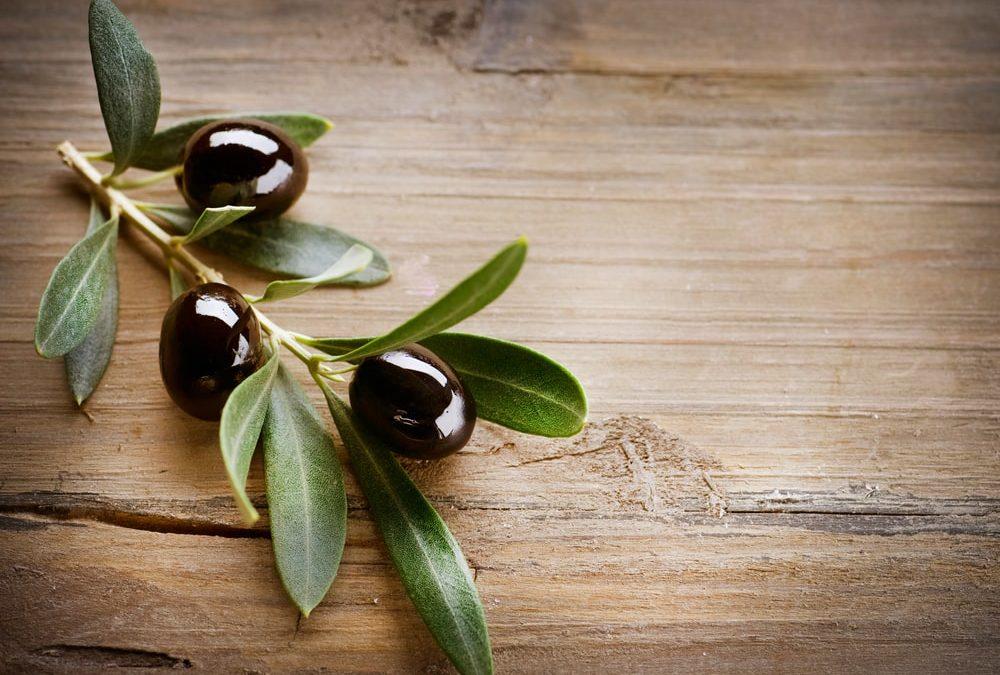 vertus de la feuille d'olivier